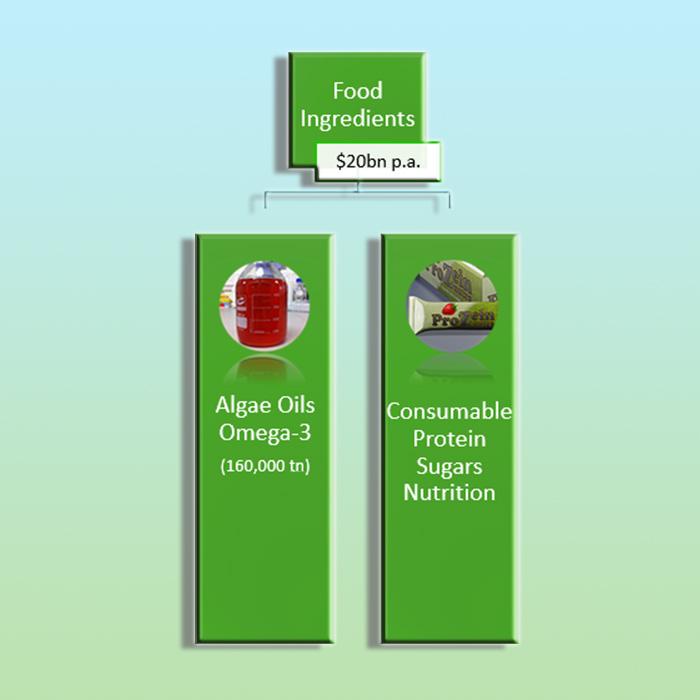 Food-Ingredients-1
