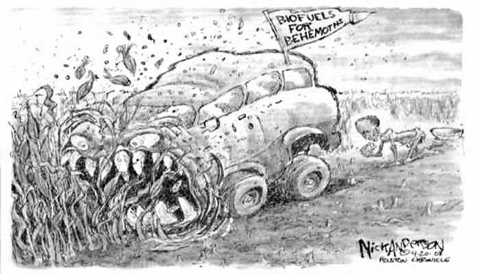 peak-biofuel