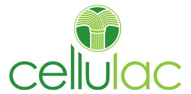 full-logo-trans