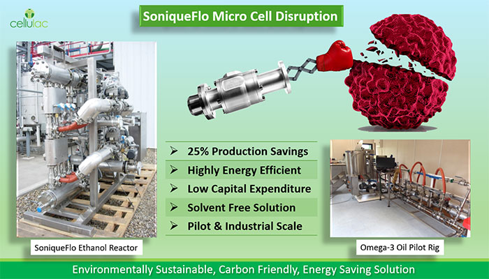 Low Energy Microalgae to Biofuel at Commercial Scale